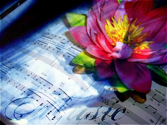music-and-flower